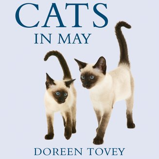 Cats in May - audiobook