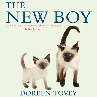 The New Boy - audiobook
