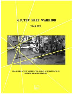 Gluten Free Warrior - ebook/epub