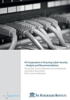 V4 Cooperation In Ensuring Cyber Security Analysis And