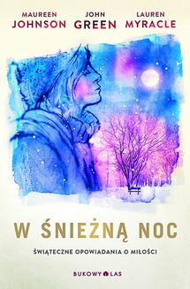 W śnieżną noc - ebook/epub