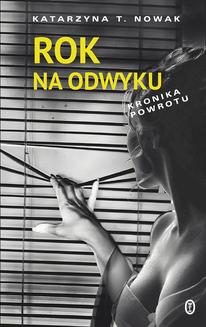 Rok na odwyku - ebook/epub