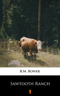 Sawtooth Ranch - ebook/epub