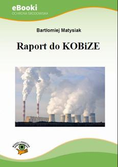Raport do KOBiZE - ebook/pdf