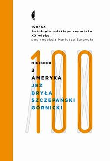 Minibook3. Ameryka - ebook/epub