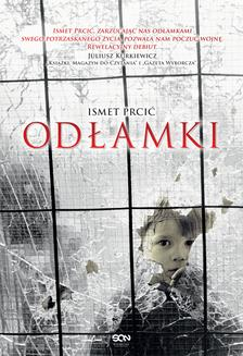 Odłamki - ebook/epub