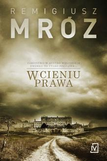 W cieniu prawa - ebook/epub